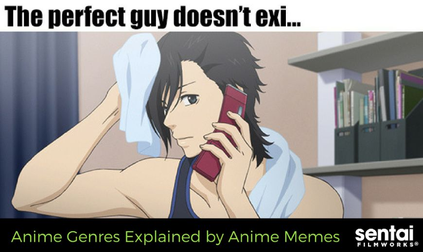 Anime Genres Explained By Anime Memes Sentai Filmworks
