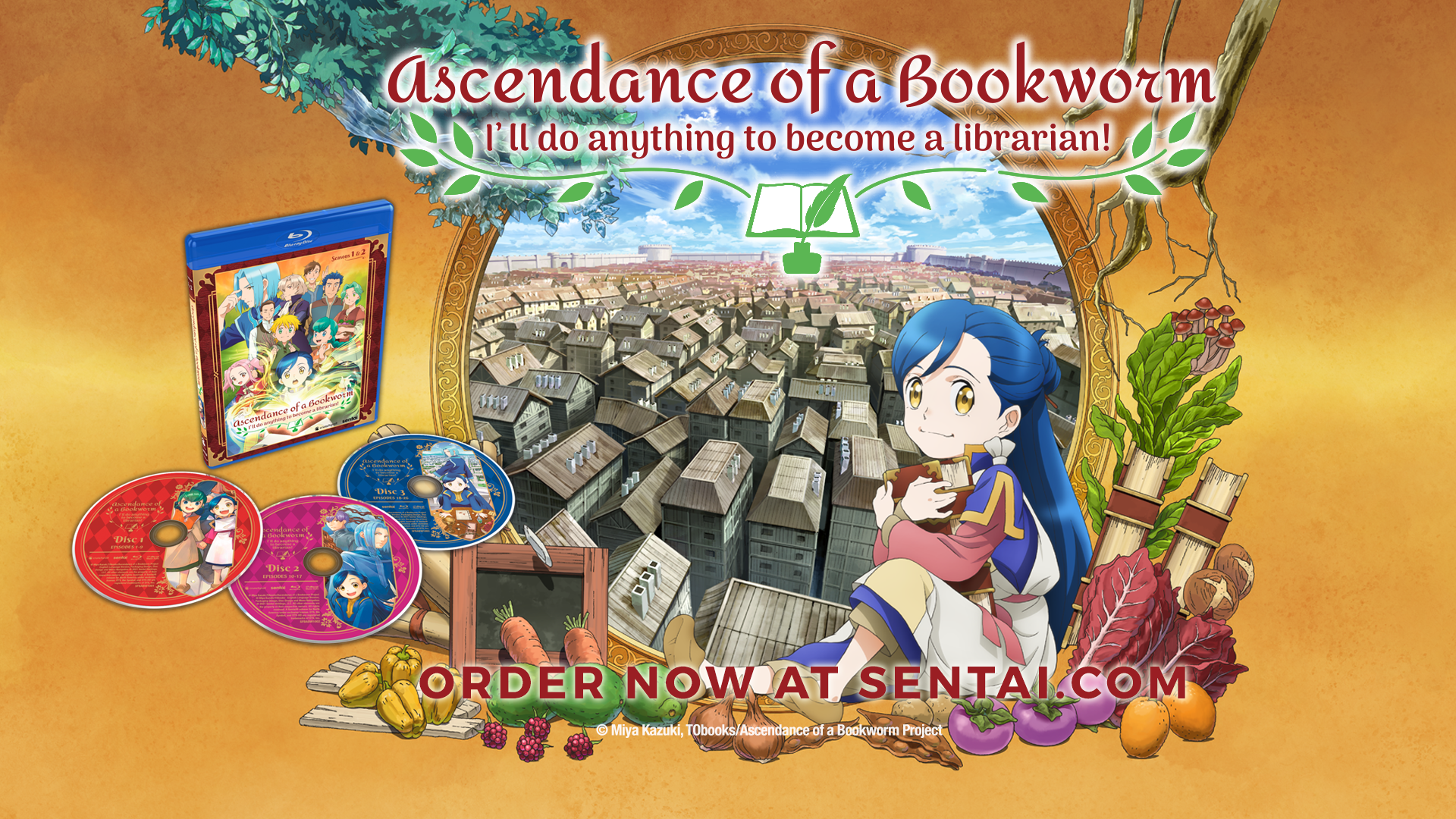"""A picture of the Acendace of a Bookworm Blu-ray along with Myne against a city landscape. The text says, """"Ascendance of a Bookworm,"""" """"I'll do anything to become a librarian!"""" and """"Order now at sentai.com"""""""