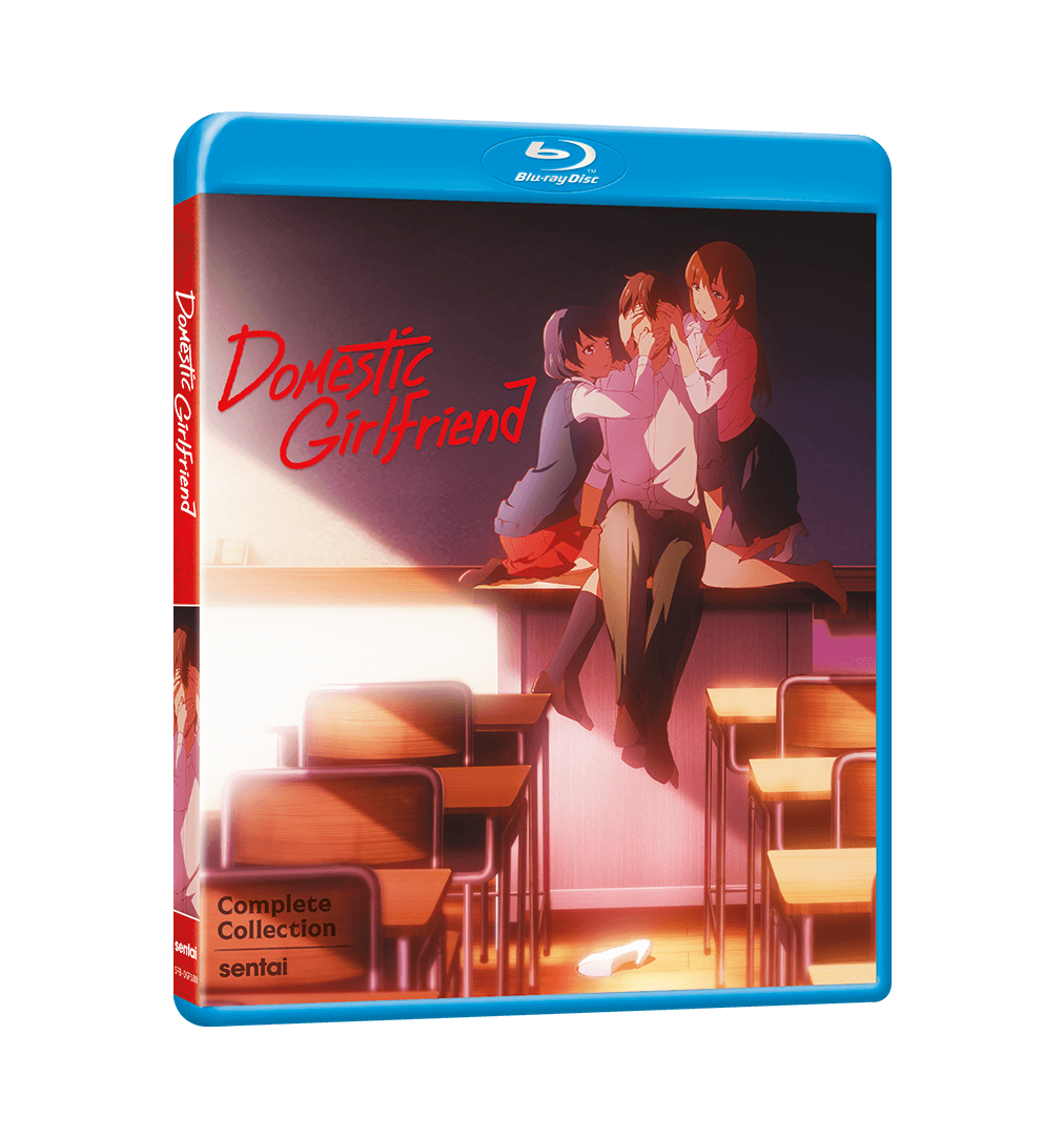 A picture of the Domestic Girlfriend Complete Collection Blu-ray.