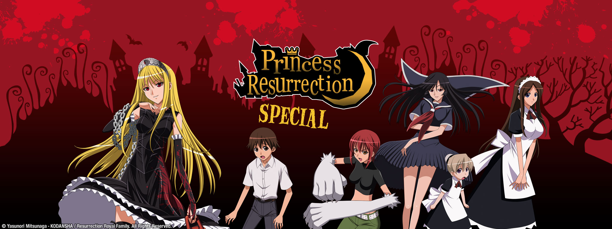 Princess Resurrection Special